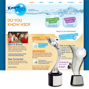 Play Pumps Website Award Winner